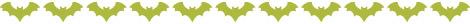 BatBorder