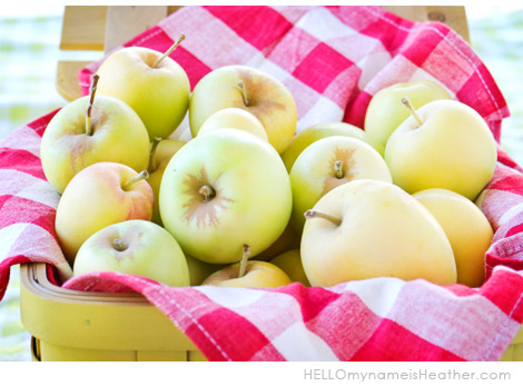 AppleBasket2