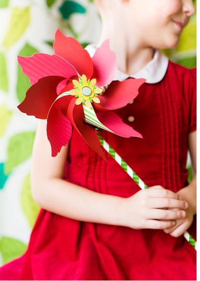 Poinsettia3