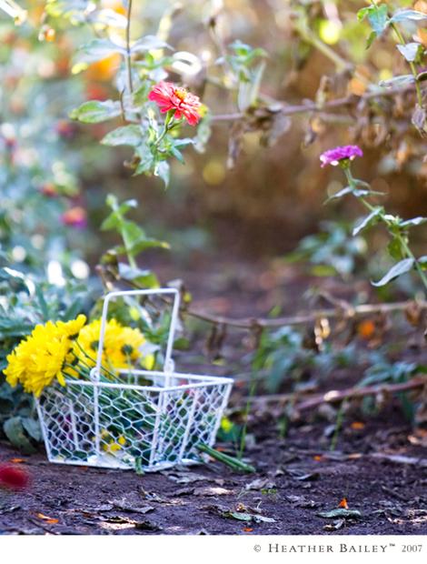 Flowerbasket_hbr_sh