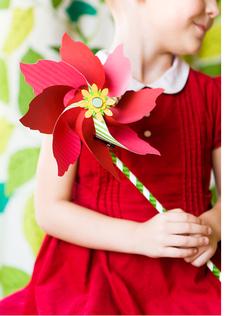 Poinsettia3_2