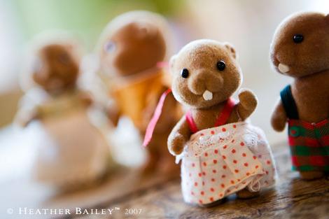 Beaverfamily1hb
