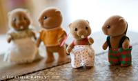 Beaverfamily2hb